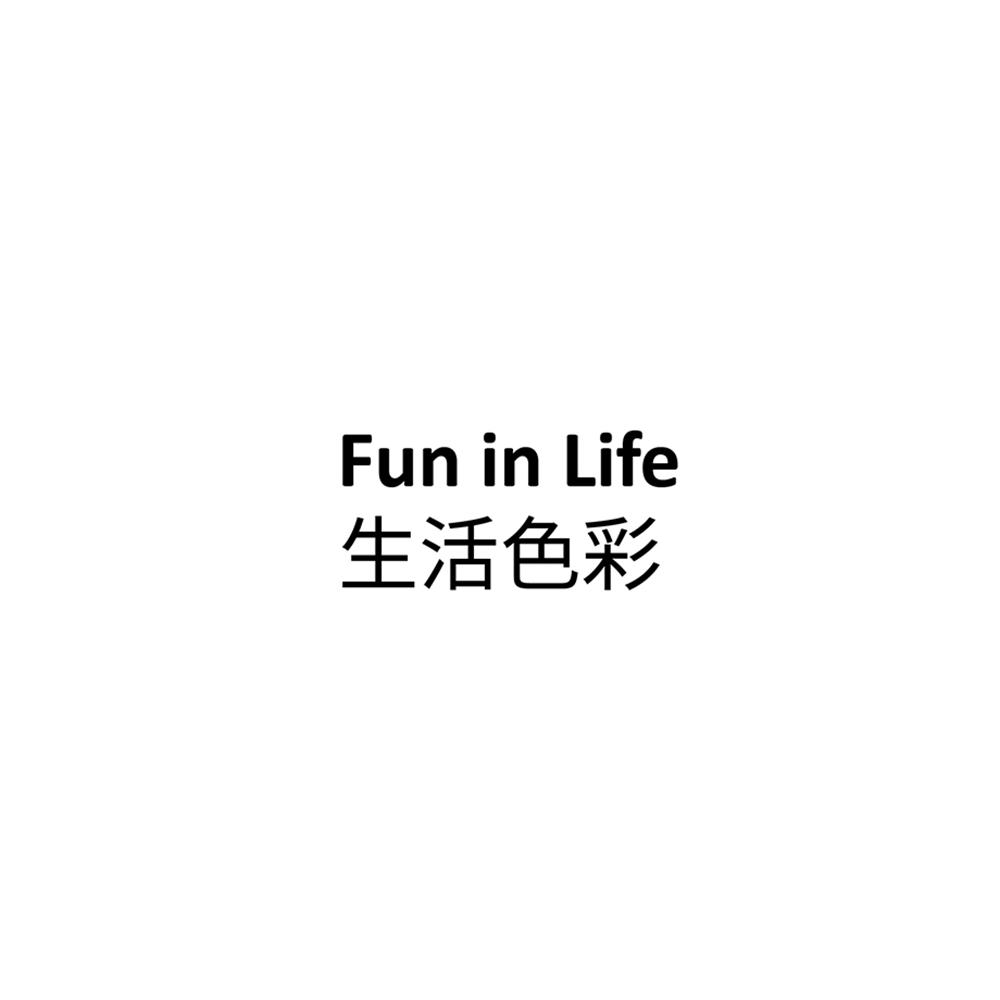 Fun In life