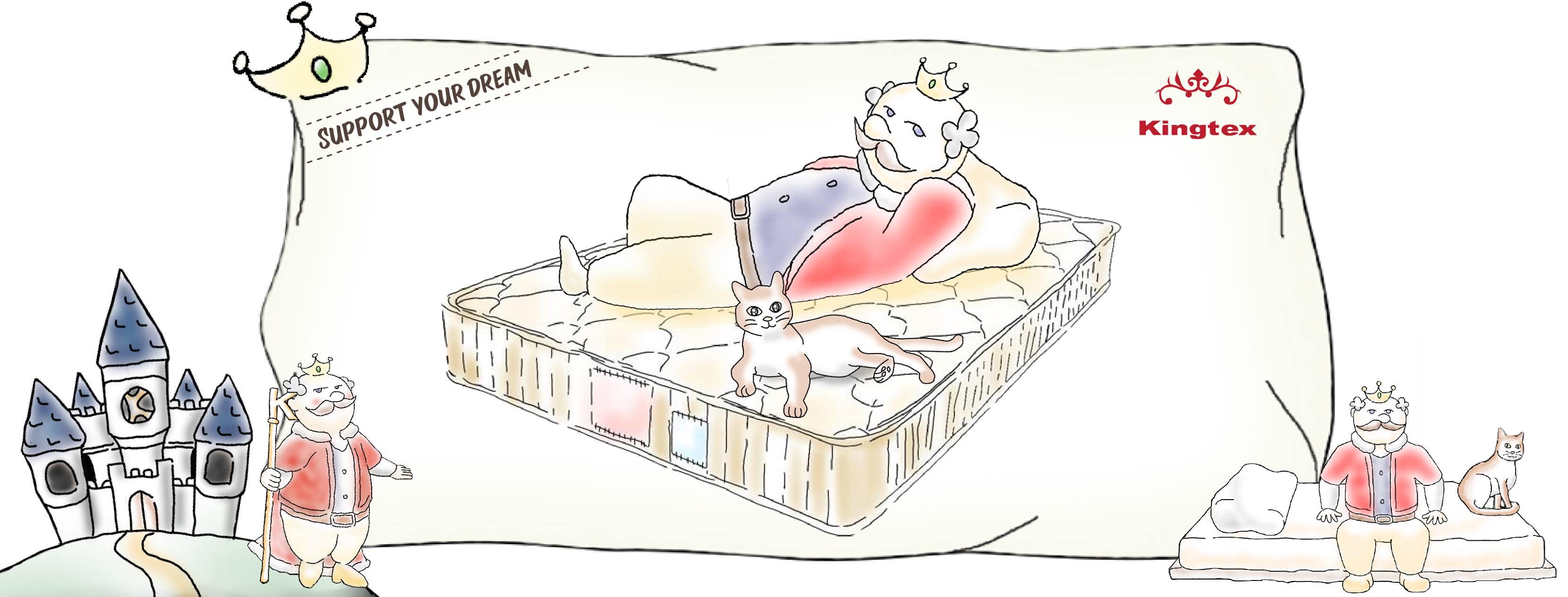 爱皇宝寝室